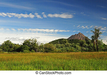 Sission Meadow w/Black Butte - A beautiful summer afternoon
