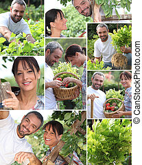 Collage of a couple in their garden