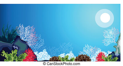 Underwater carols and weeds - This illustration is a common...
