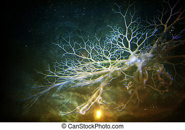 Dendrites of the Space-Mind - Abstract with a science...