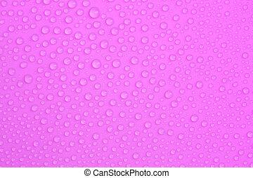 Water-drops on purple