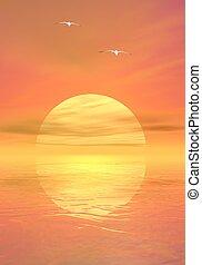 Seagulls by sunset - Big yellow sun shining while sunset...