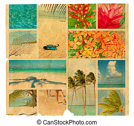 Tropical collage on a piece of old paper, illustration....