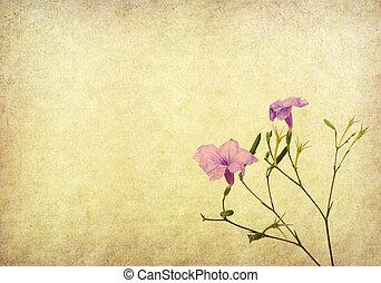 purple flower on Old antique vintage paper background