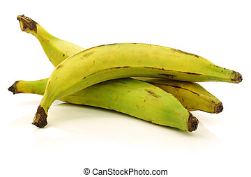 plantain (baking) bananas - fresh still unripe plantain...