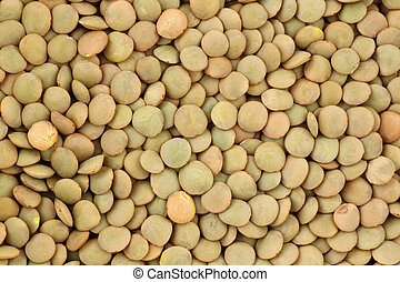 dried green lentils  - Background of dried green lentils