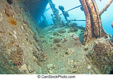 Shipwreck underwater - Companionway corridor on the side of...