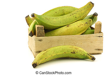 unripe baking bananas (plantain bananas) in a wooden crate...