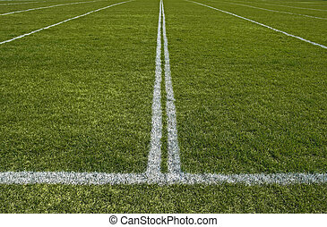 Perspective of a playing field with painted white lines -...