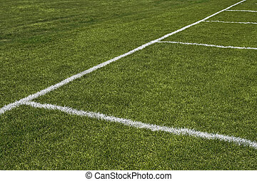 Emerald grass of a playing field