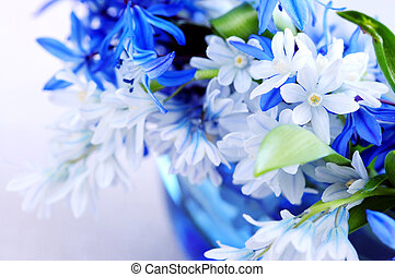 First spring flowers - Blue bouquet of first spring flowers...