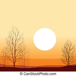 Winter sunset - This illustration is a common natural...