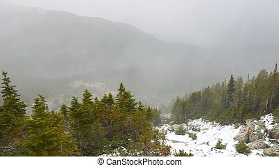 Canadian Rockies Snowstorm - Blizzard in the Canadian...