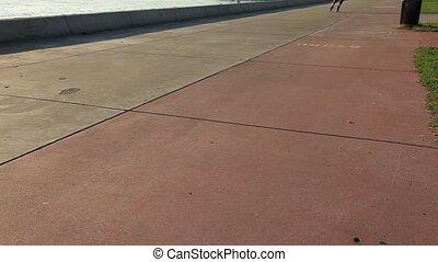 roller skater on the road