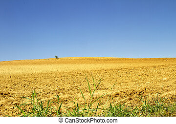 Landscape of a hill with plowed fields
