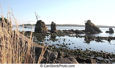 Lowtide at Garibaldi Beach Oregon - Lowtide at Garibaldi...