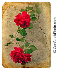 Roses. Old postcard, design in grunge and retro style