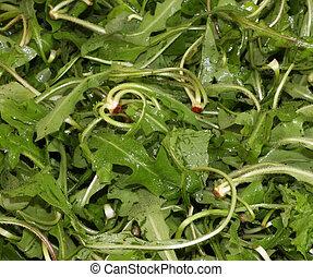 Chicory - Wet Chicory