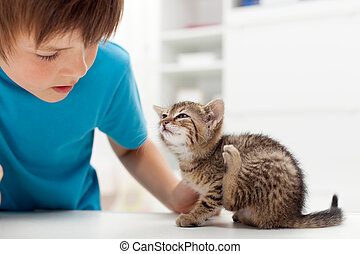 My kitten has fleas - boy looking at his cat scratching its...