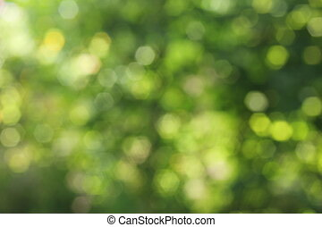 Background green bokeh - Decorative green blurred background...