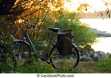 Old and vintage bicycle near the river in sunset colors