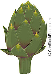 Artichoke - The king of vegetables: realistic isolated...