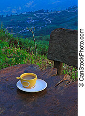 coffee on hill in Phetchabun province thailand