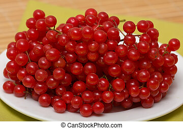 Mossberry - Red mossberry in white plate