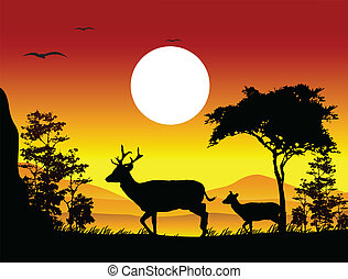 beauty deer silhouette - vector illustration of beauty deer...