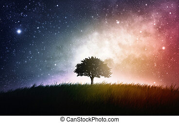 Single tree space background - A single tree in a field with...
