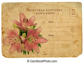 Blooming flower of pink lily Old postcard, design in grunge...