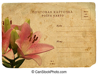 Blooming flower of pink lily. Old postcard, design in grunge...