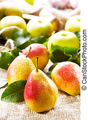 fresh pears and apples
