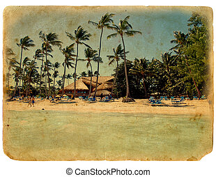 rest on the beach, lounge chairs, palm trees, the bungalows....