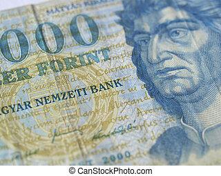 Ungersk valuta forex