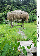bungalow in grass