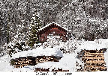 Winter landscape - Typical swiss winter season landscape....