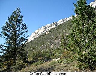 Ridge of the canyon wall - Looking up at the cayon wall at...