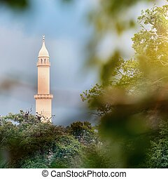 Minaret - View of the minaret through the branches of a tree...