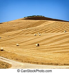 Straw bales on farmland with blue cloudy sky - Beautiful...