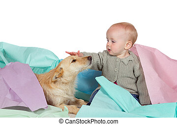 Baby patting the family dog - Adorable young baby sitting on...