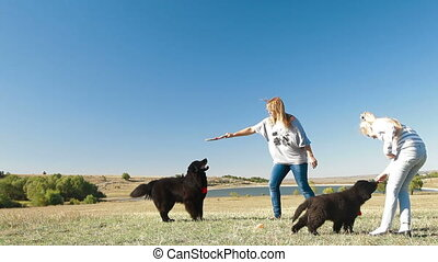 People Enjoying Outdoor With Pets - People with Newfoundland...