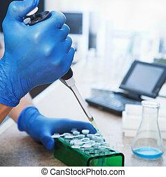 molecular, biología