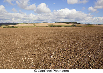 patchwork autumn landscape - patchwork fields in the...