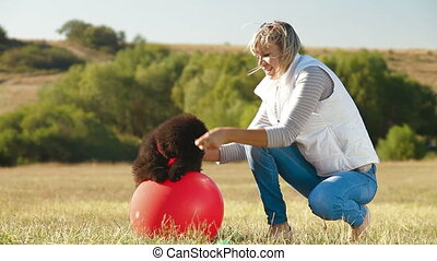 Woman Playing With Puppy Newfoundland Outdoor