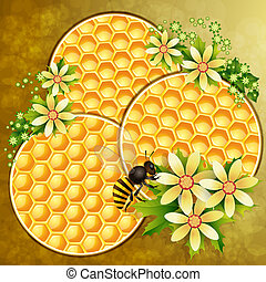 Background with honeycomb and bee