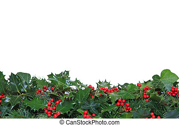Holly and Ivy footer - Holly with red berries, ivy and...