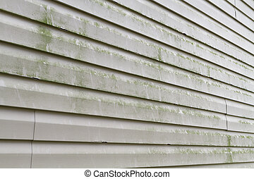 Dirty Vinyl Siding Needs Power Washing - Green algae, mold,...