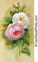 Watercolor Flower Collection: Roses background, bouquet,...