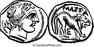 Ancien, celtique, drachme, monnaie, vendange, gravure